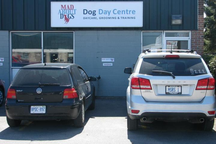 Pet Friendly Mad About Dogs