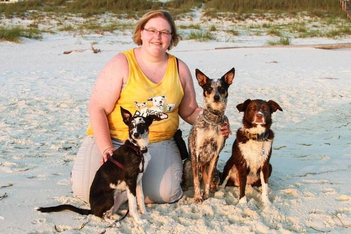 Pet Friendly Success Just Clicks Dog Training