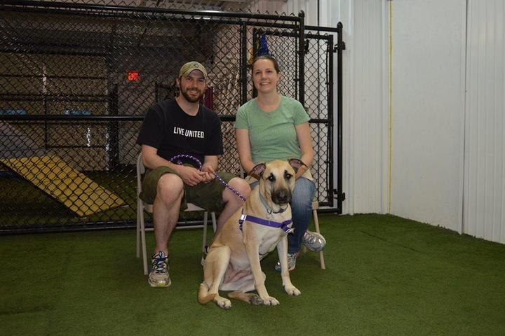 Pet Friendly The Complete Canine Center, LLC