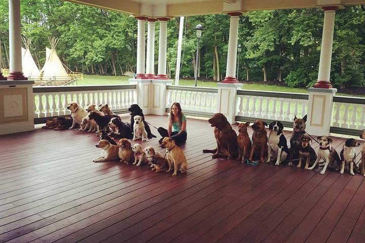 Pet Friendly Mind of Dog, LLC