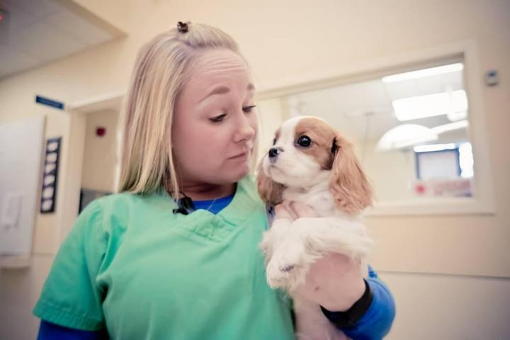 Pet Friendly West Chester Veterinary Medical Center