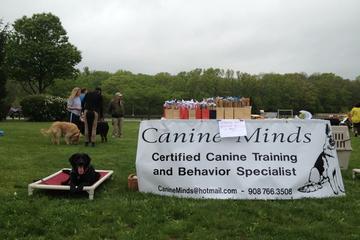 Pet Friendly Canine Minds