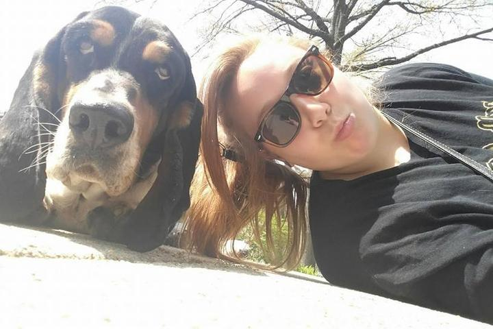 Pet Friendly Crofton Dog Walkers