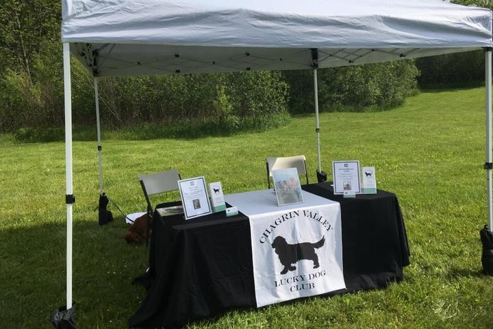 Pet Friendly Chagrin Valley Lucky Dog Club