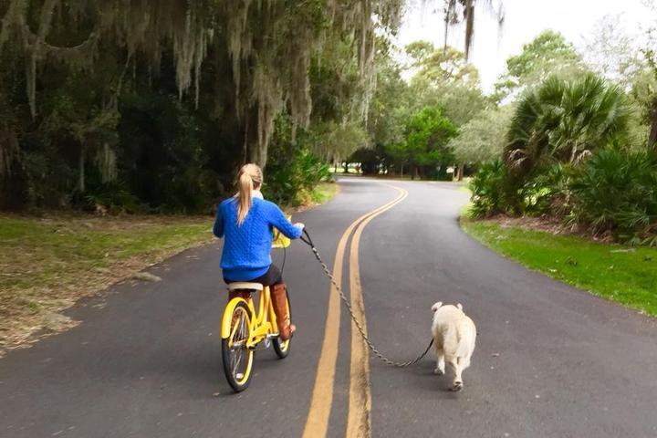 Pet Friendly Pawsitive Partnerships