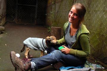 Pet Friendly Mbwa Wa Africa Animal Rescue & Kennel Service