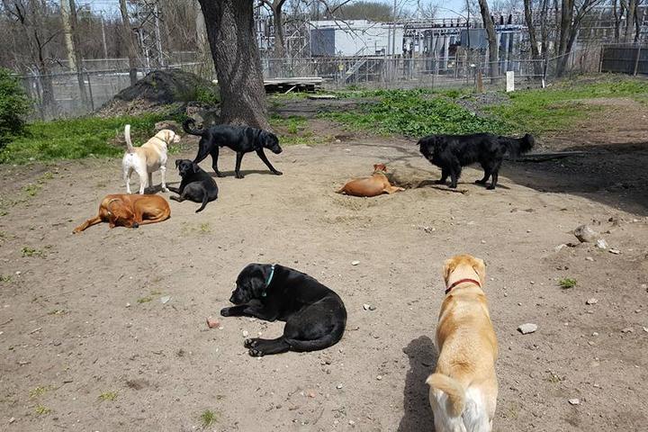 Pet Friendly Change Your Range, LLC