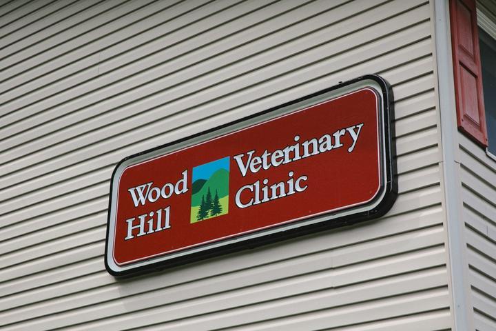 Pet Friendly Wood Hill Veterinary Clinic