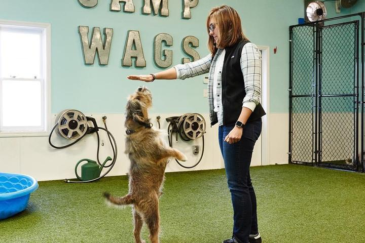 Pet Friendly Wags 'n Whiskers