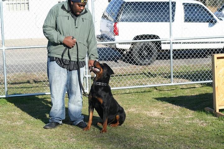 Pet Friendly K-9 Protection Services, Inc