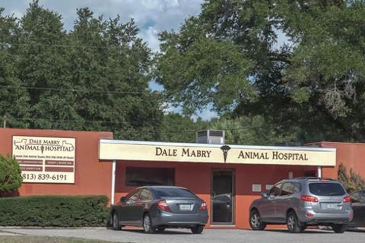 Pet Friendly Dale Mabry Animal Hospital