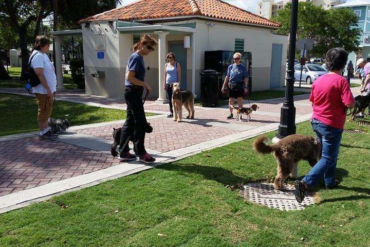 Pet Friendly Canine Star Training Academy