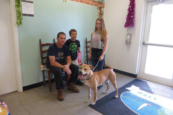 Pet Friendly Edgewater Animal Shelter