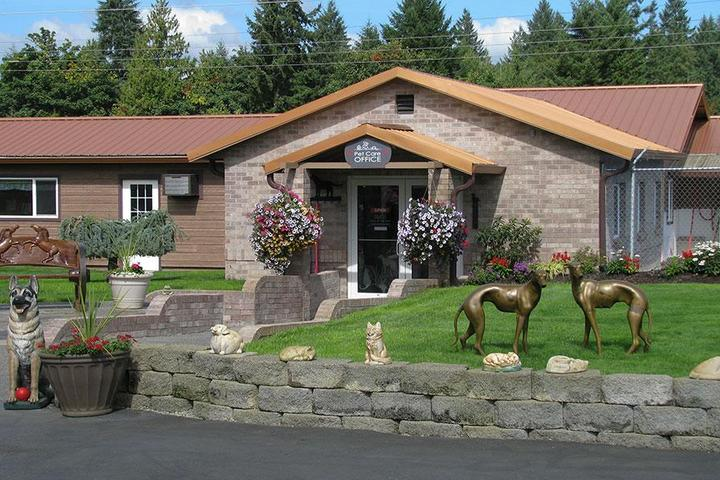 Pet Friendly Creature Comforts Kennel