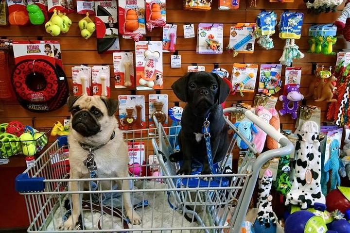 Pet Friendly Munchies Natural Pet Foods