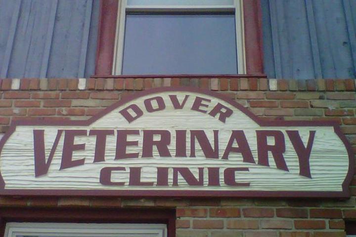 Pet Friendly Dover Veterinary Clinic
