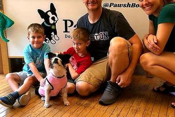 Pet Friendly Pawsh Dog Boutique & Salon