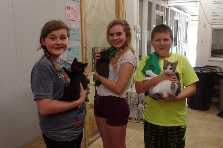 Pet Friendly The ANNA Shelter
