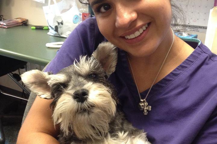 Pet Friendly Fremont Veterinary Hospital