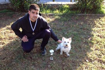 Pet Friendly K9doorways Dog Trainer School