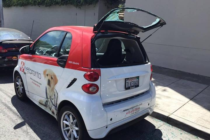 Pet Friendly VetPronto - Mobile Veterinarians