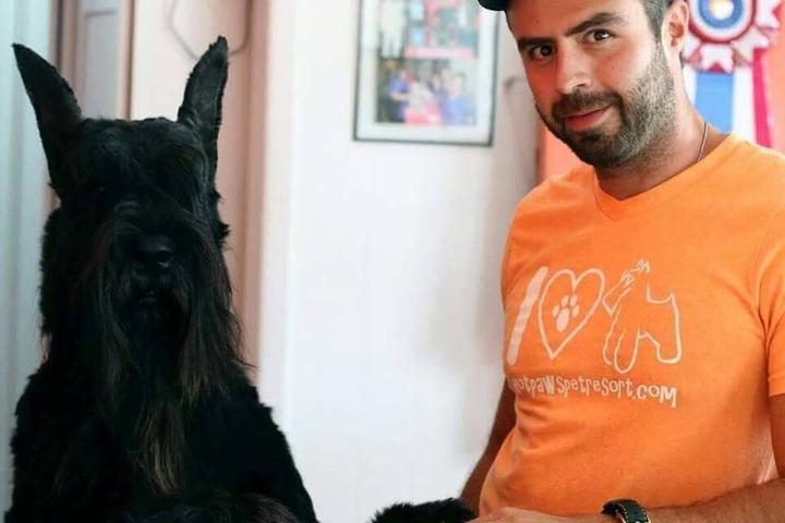Pet Friendly Hot Paws Pet Spa & Resort