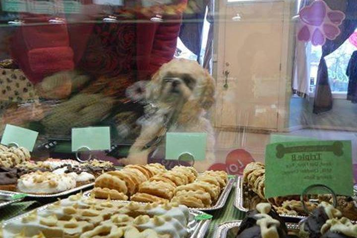 Pet Friendly Our Happy Tails Etc Dog Bakery