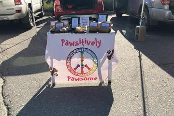 Pet Friendly Pawsitively Pawsome Pet Sitting and Dog Walking