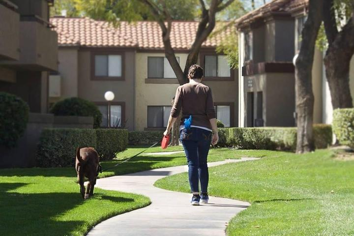 Pet Friendly April's Pet Sitting and Dog Walking Services