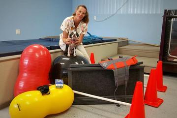 Pet Friendly Tampa Bay K9 Rehabilitation Center