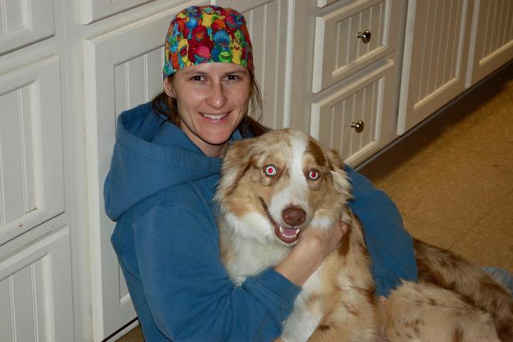 Pet Friendly Austin Veterinary Animal Hospital