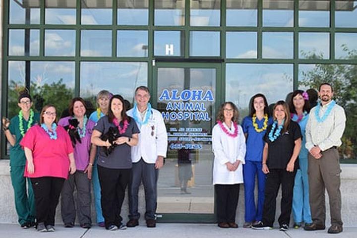Pet Friendly Aloha Animal Hospital