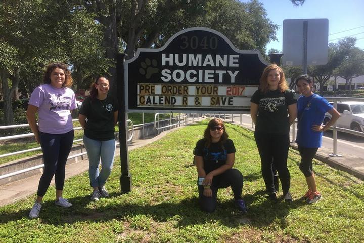 Pet Friendly Humane Society of Pinellas