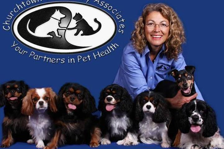 Pet Friendly Churchtown Veterinary