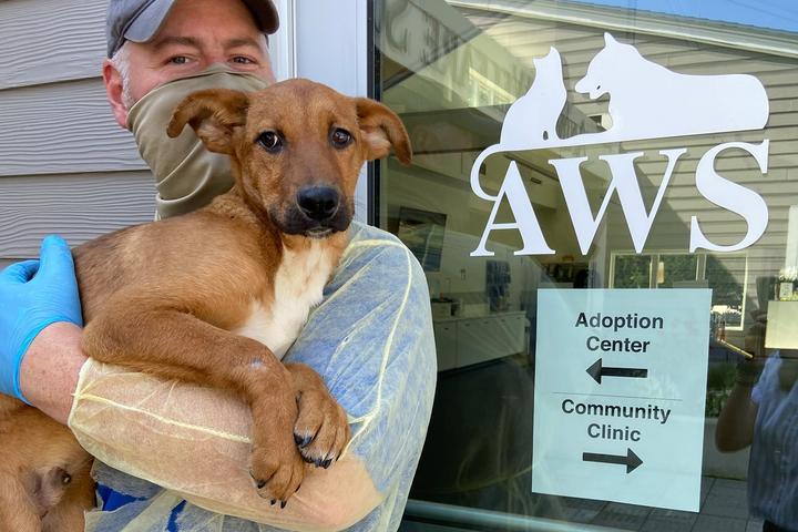Pet Friendly Animal Welfare Society