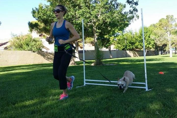 Pet Friendly Paws & Bootcamp