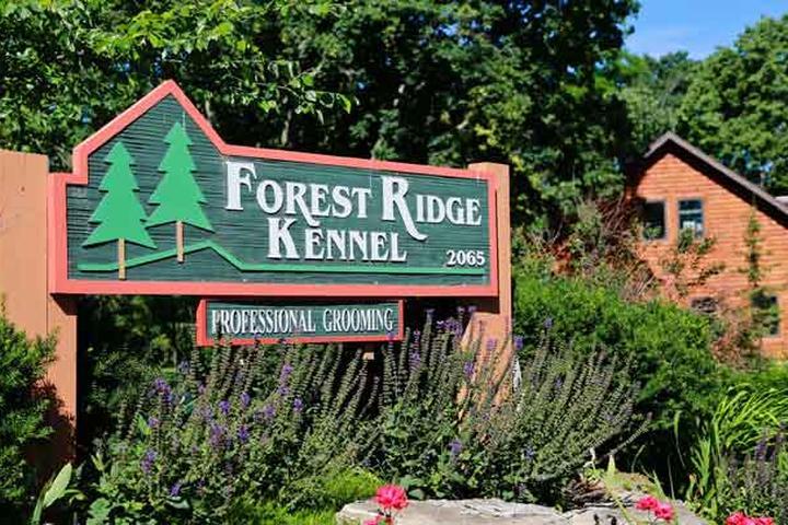 Pet Friendly Forest Ridge Kennel