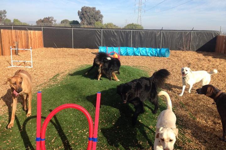 Pet Friendly Livermore Kennels Ranch