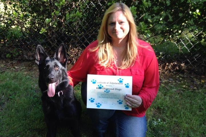 Pet Friendly Ruff Diamond Dogs In Home Obedience Training