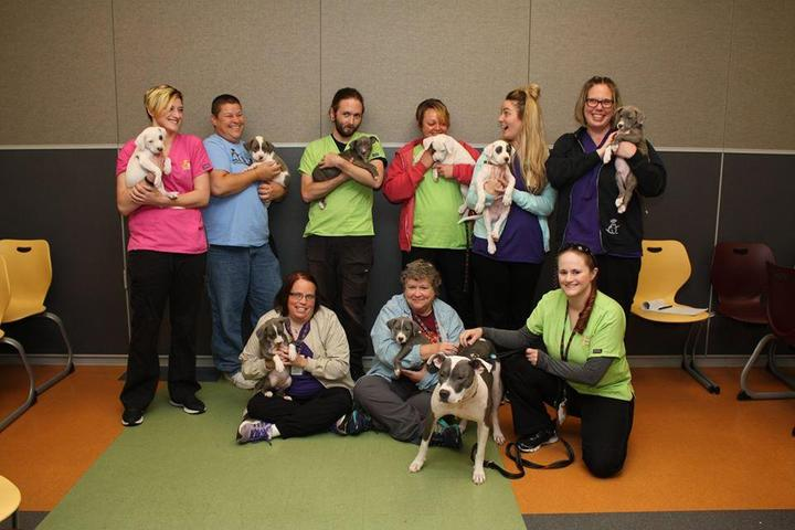 Pet Friendly Kansas Humane Society