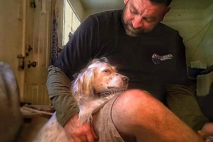 Pet Friendly Dog Training Sugar Land, Texas
