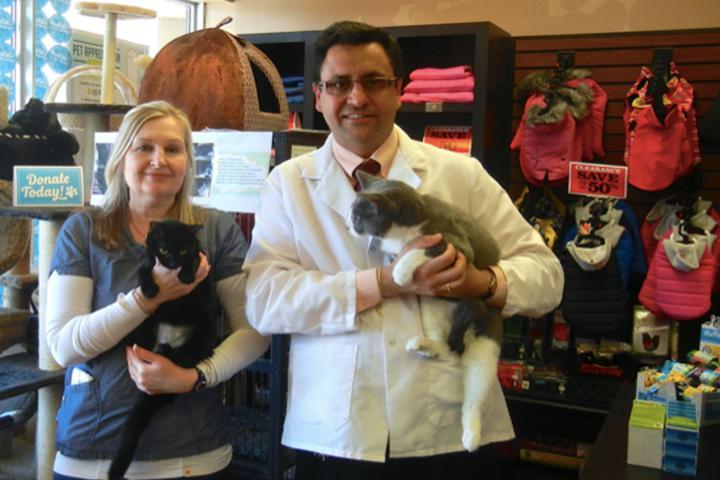 Pet Friendly 16th Avenue Animal Hospital