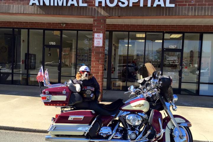 Pet Friendly Animal Hospital of Peak Plaza
