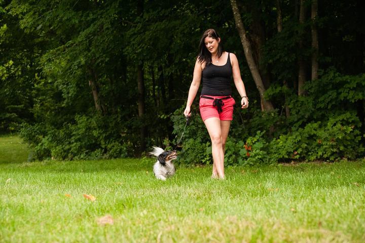 Pet Friendly The Dog Path