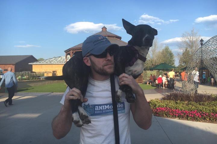 Pet Friendly Animobile Mobile Veterinary Services