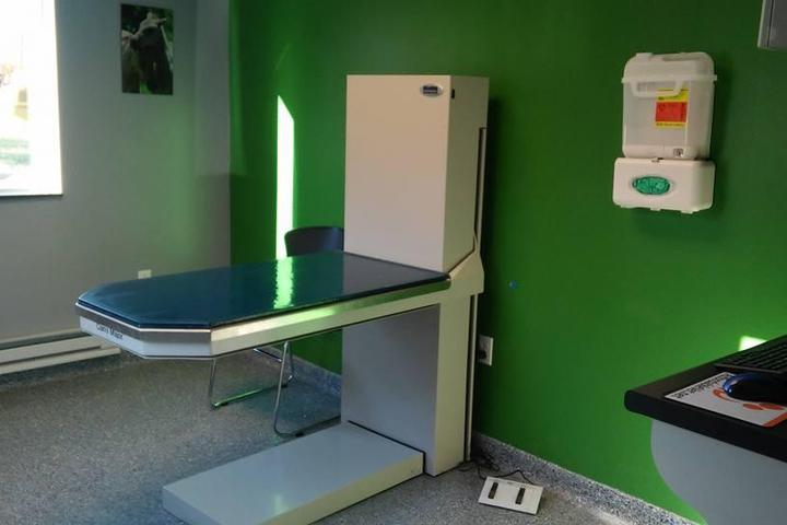 Pet Friendly A Step Up Veterinary Clinic