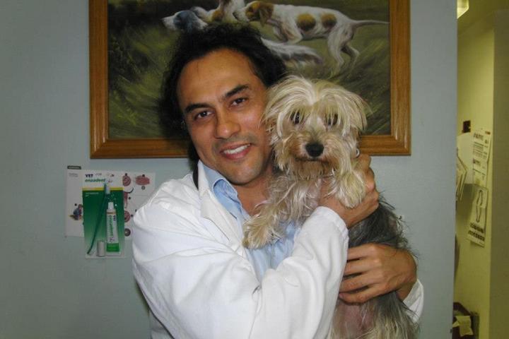 Pet Friendly Brookhurst Animal Medical Center