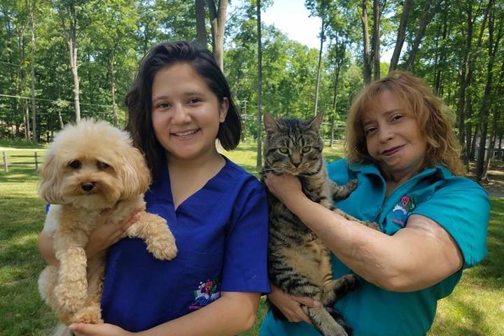 Pet Friendly Paticas International Pet Grooming