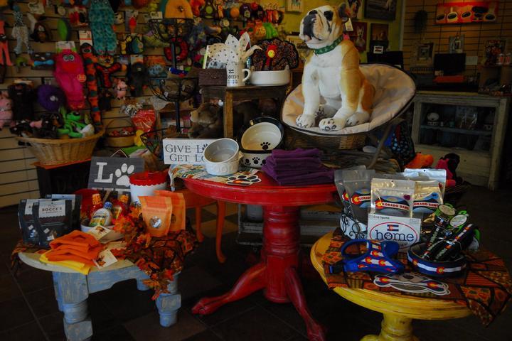Pet Friendly Paw Prints Boutique & Spa