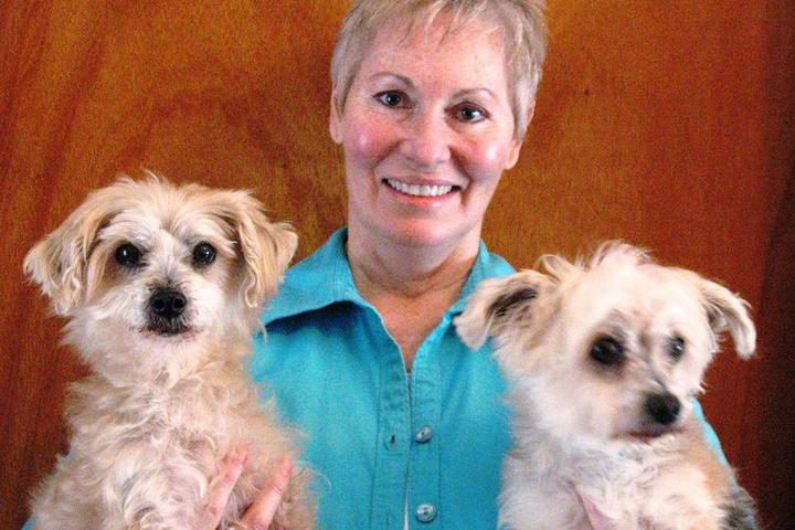 Pet Friendly Carolyn's Canine Care